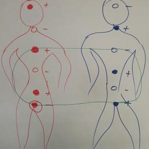 Seminaras poroms Nr. 3 Kaip sustiprinti intymų poros ryšį. Apribojimų teorijos metodu išspręstas meilės ir seksualinio sutuoktinių poreikių apjungimo sprendimas poroms, norinčioms sukurti stiprią intymią tarpusavio trauką ir taip sustiprinti šeimą.