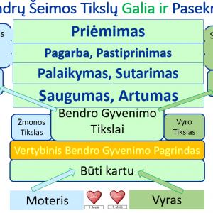 Seminaras poroms Nr. 6 Bendri Šeimos Tikslai ir Vizija. Parengė Mykolas Truncė, Porų psichologas, konsultantas, Lektorius